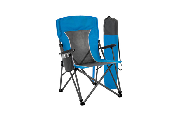 Portable chair with folding arms
