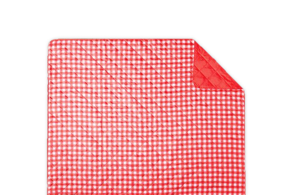 Gingham beach blanket